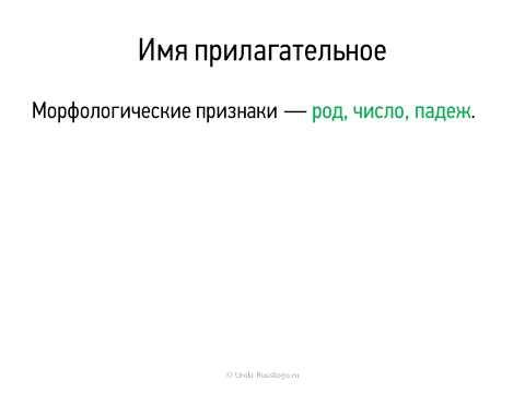 7 класс видеоконсультация по русскому языку  Прилагательное часть 2  Юденко Л Е