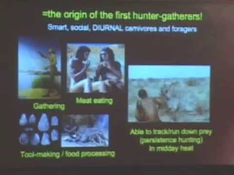 Survival of the Fleetest, Smartest, or Fattest? Human Evolution 150 Years After Darwin on YouTube