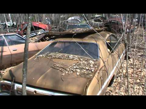 private old car junk yard
