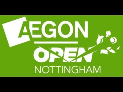 Thomas Fabbiano v Dudi Sela - Nottingham 2017 - Final (Set 2)