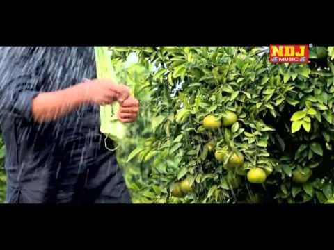 Meri Khet Mein Duty Lage Se - New Haryanvi Songs 2015 - Haryanvi Dj Song