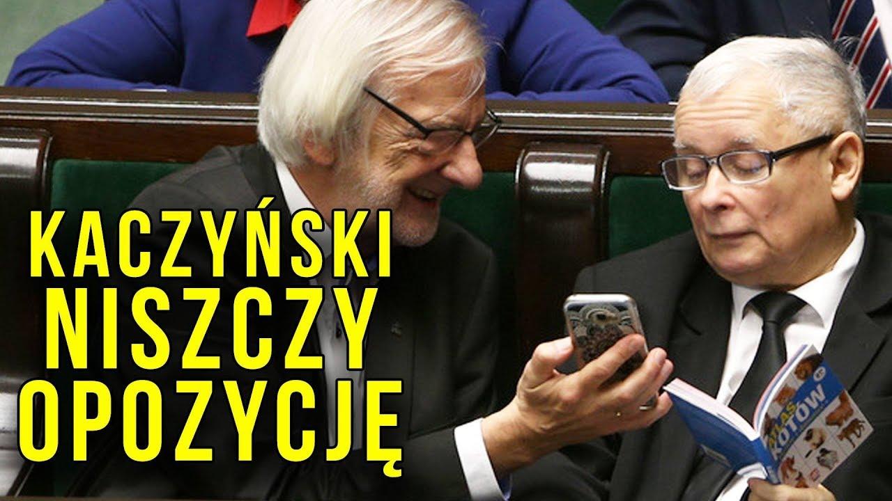 Kaczyński ZNISZCZYŁ Opozycję. Atlas Kotów w Sejmie = Dystans Odwrócenie Uwagi Wyśmianie Opozycji