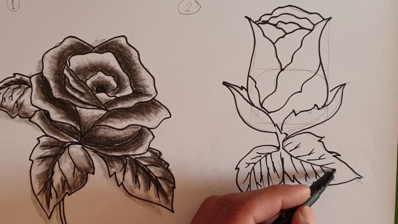 تعلم رسم الوردة الجوري للمبتدئين Draw Roses For Beginners Two Steps Only Youtube