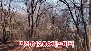 전원주택, 펜션개발용 토지임야/옹진군 영흥도 바닷가