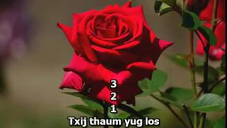 Pov Thoj - Tsis Tau Pom Dua (Girl Karaoke)