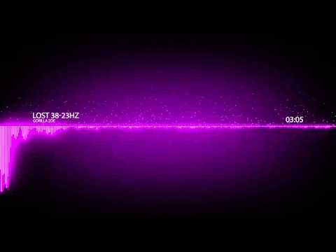 [ 23-38 Hz] Gorilla Zoe   Lost