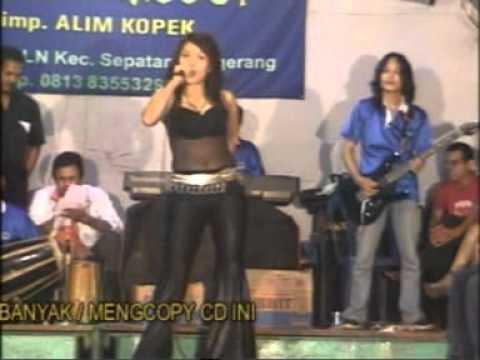 """Musik Dangdut - Dini Anggraeni """"Sampai Kapankah"""""""