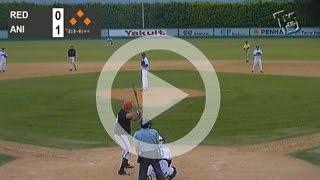 Torneio Nacional de Beisebol (Amador): Anisa Troopers X Red Sharks