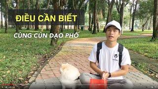 Dạo phố cùng cún cưng | Điều cần chuẩn bị | Huấn luyện chó cơ bản BoṡṡDog (Dog training)