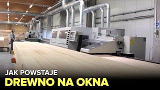 Jak powstaje DREWNO na OKNA I DRZWI? - Fabryki w Polsce