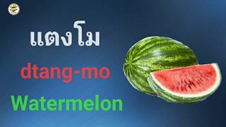 Learn Thai Vocabulary with Pictures, Thai English Lesson screenshot 5