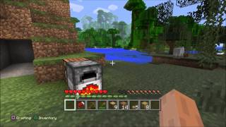 Minecraft PS4 Gameplay - Survival - Part 1 -  My First Night - HD