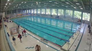 видео Всероссийская федерация плавания