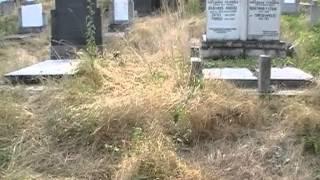 Oskrnavljeno groblje u Peći