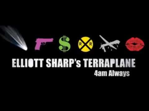 Elliott Sharp's Terraplane - New Steel