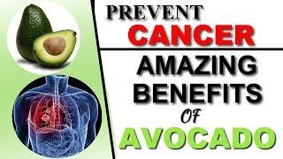 Top 10 Health Benefits of Avocado | Health Care Tips | Avocado Benefits