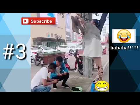 funny video 2017 #3