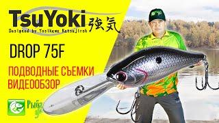 Огляд воблера TsuYoki Drop 75 Floating