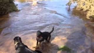 Water Fun At Kempsey