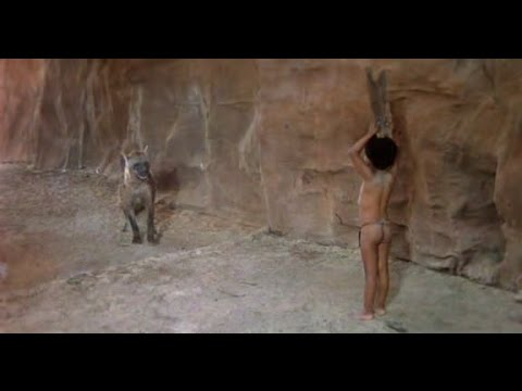 Download The Gods Must Be Crazy 2  | a best film of all time | full movie