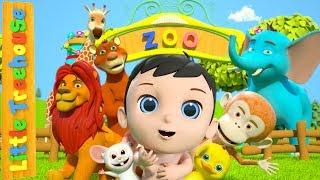 Kids Songs and Nursery Rhymes | Kindergarten Baby Songs From Little Treehouse