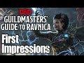New D&D Campaign Setting- Guildmaster's Guide To Ravnica