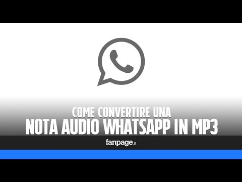 Salvare (e convertire) un messaggio vocale WhatsApp in mp3