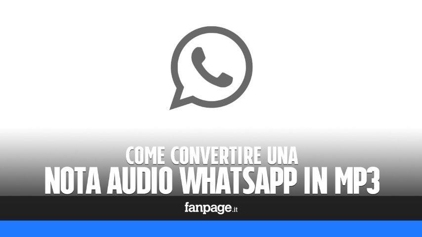 Whatsapp скачать бесплатно mp3