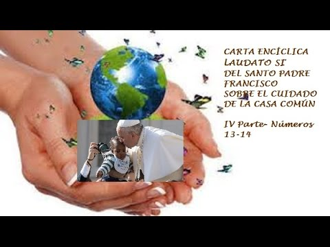 Iv parte carta enc clica laudato si papa francisco n 13 for Pared de 15 ladrillo comun