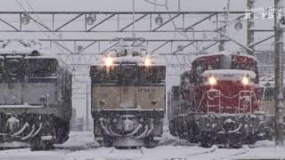EF64 雪かきに追われる機関区 出区準備に忙しいEF64&DE10 JR貨物塩尻機関区篠ノ井派出 HDV 876
