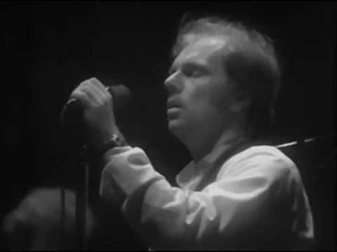 Van Morrison I've Been Working