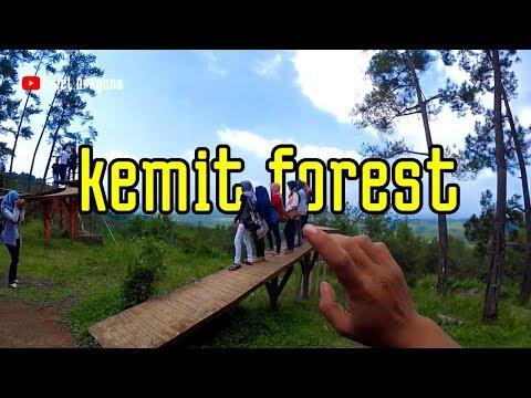 kemit-forest-sidareja-cilacap-terbaru-trailers