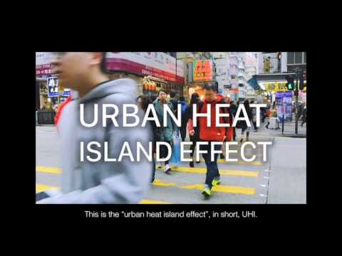 Urban Heat Island Effect in Hong Kong [CCGL9040]