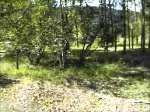 9781 Meadow Road Red Lake Tranquille Valley Kamloops