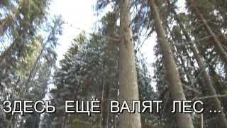 Декинг   террасная доска(http://www.sng-shop.ru/catalog/deking http://www.sng-shop.ru/catalog/doska-m/doska-palubnaya-terrasnaya ТЕРРАСНАЯ ДОСКА -- ИДЕАЛЬНЫЙ ВАРИАНТ ..., 2013-11-16T15:57:36.000Z)