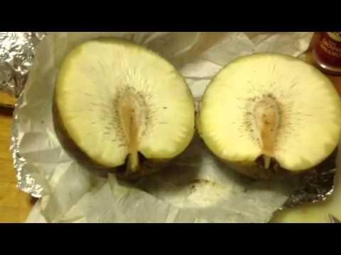 Breadfruit and Diabetes Breadfruit  use it as Bread.