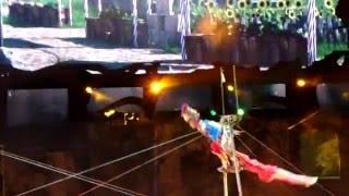 Цирк братьев Запашных  - Ярмарка - шоу