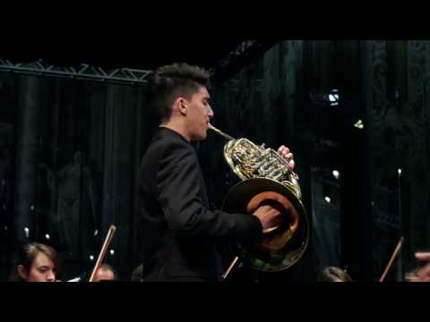 Fiorenzo Ritorto - Mozart Horn Concerto n.4 K495