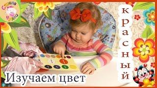 Раннее развитие ребенка с года. Методика обучения цвету
