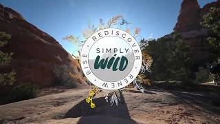 SIMPLY WILD: A BACKPACK RETREAT FOR THE MODERN WOMAN!