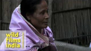 Womenfolk pound rice with wooden rice pounder for making Pitha, Assam