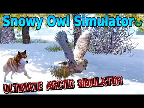🦉Snowy Owl Simulator-Part 1-Ultimate Arctic Simulator-By Gluten Free games-IOS/Android