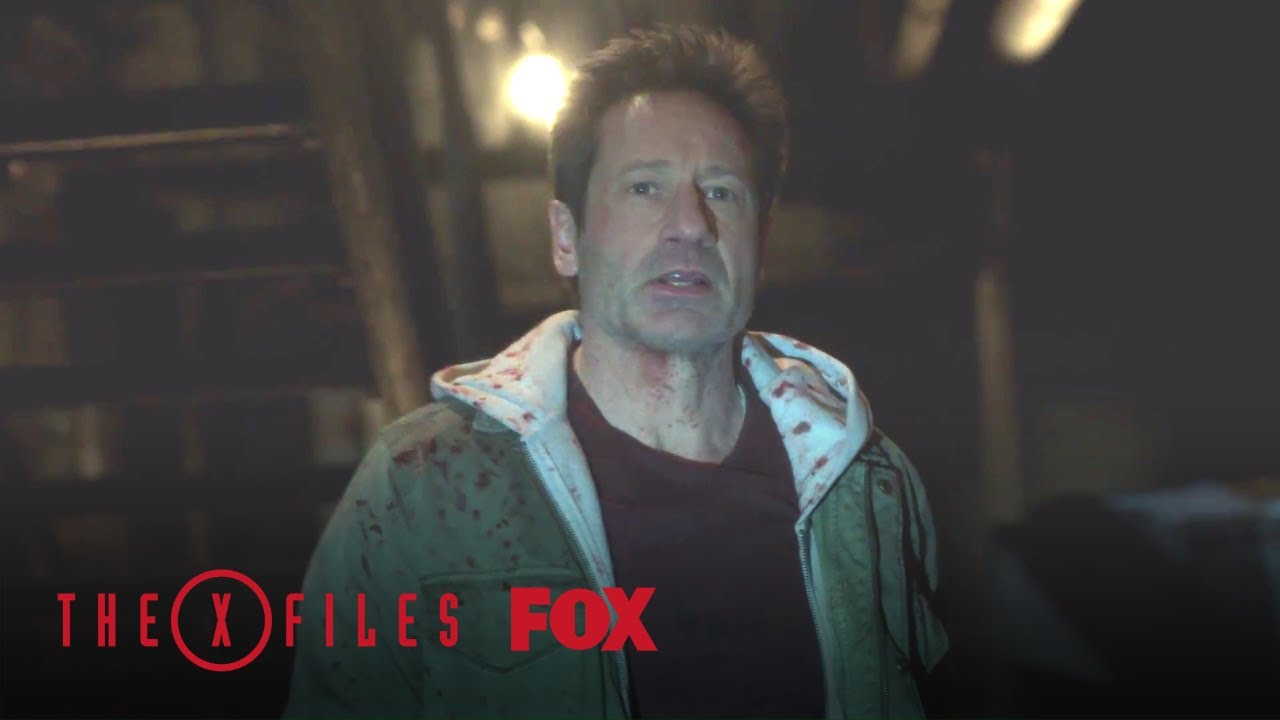 Download Scully Tracks Down Mulder   Season 11 Ep. 10   THE X-FILES