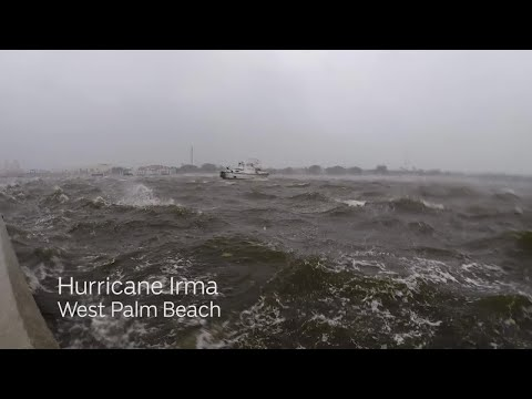 Hurricane Irma Video: Powerful winds in West Palm Beach