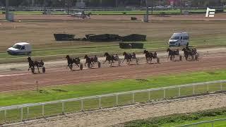Vidéo de la course PMU PRIX DE BEAUMONT-DE-LOMAGNE