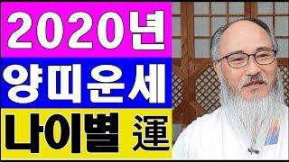 [ 2020년 양띠운세 ] *경자년 나이별운세★안 보면 후회할 특별 영상  (나이별운세★신년운세 토정비결)