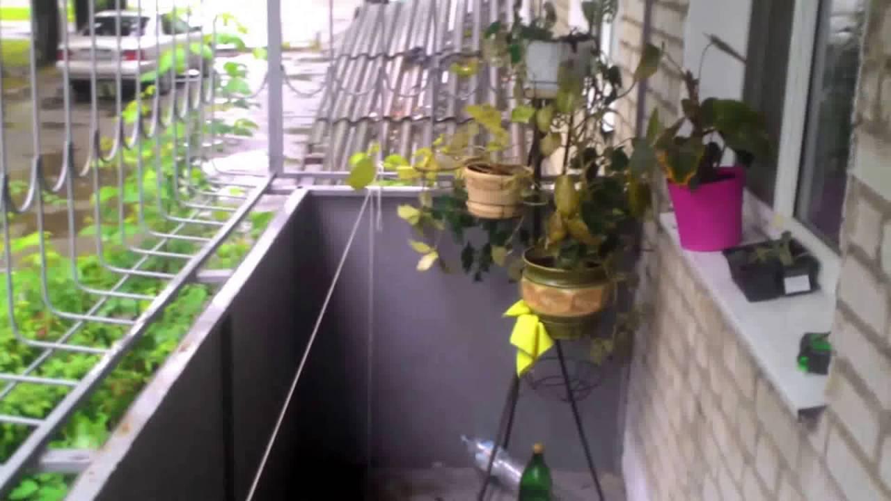 Шумоизоляция железной кровли балкона 4,7х1,3м (вибропласт) -.