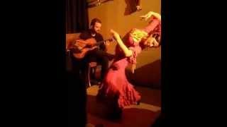 Flamenco Argiro