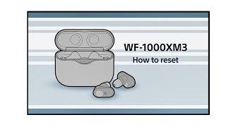 WF1000XM3_gesture