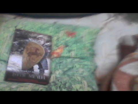 "Книга Джорджа Мартина ""Буря Мечей"" на подушке"